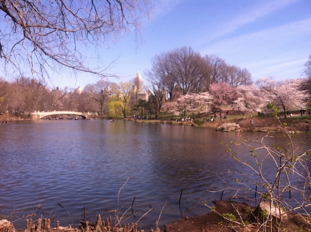 Central Park in early spring